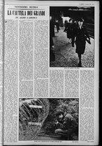 rivista/UM10029066/1963/n.5/5